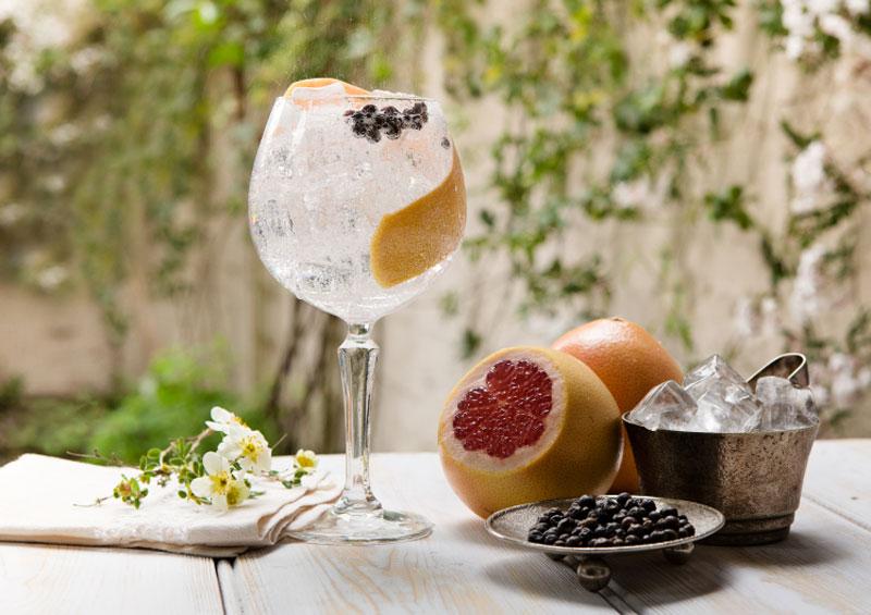 gin-lemon-and-duke-dublin