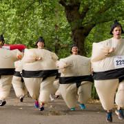 sumo-run